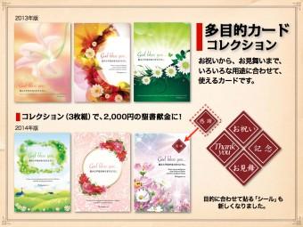 06_colection_tamokuteki